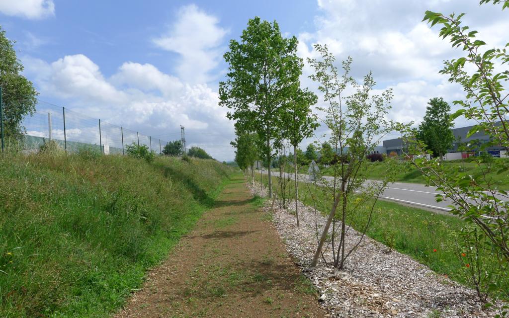 Aménagement paysager de la RD75